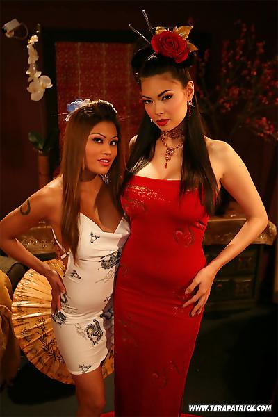 Sexy Asian MILF Tera Patrick..