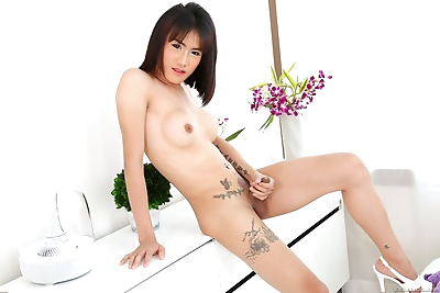Asian ts catty solo..